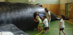 whalemobile 2